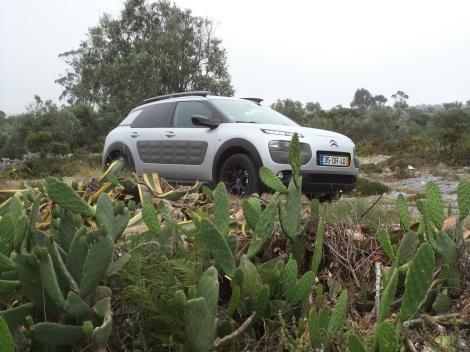 Citroën C4 Cactus 1.6 e-HDi 90 ETG6 Feel Edition (Fotos: Serra dos Candeeiros e Algés)