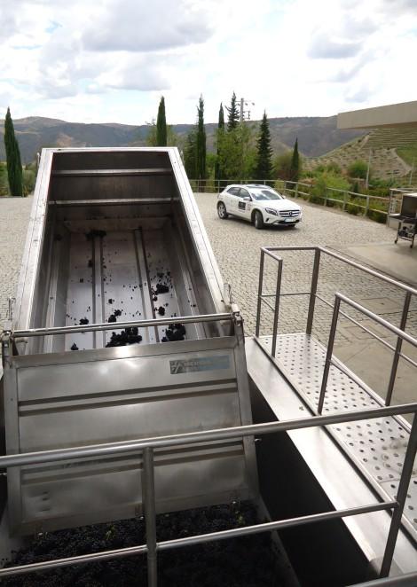 A Quinta da Leda é uma das que irão ser visitadas durante o dia de sábado