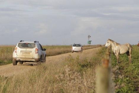 Foram 35 as viaturas e cerca de 100 as prssoas que cruzaram as Lezírias