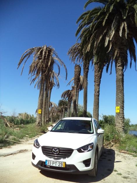 O preço do Mazda CX-5 2.2 Skyactiv-D 2WD Evolve começa nos 38.350 euros