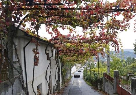 Uma aldeia portuguesa, com certeza...